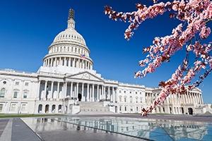 US Capital - Blog-1