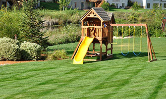 Backyard Safety: Protect Your Family From These 6 Dangers